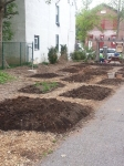 Garden beds ready for planting...