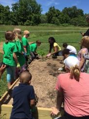 Barth Garden 2016-Planting 1